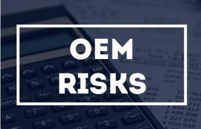 What Are the Potential Price Risks of OEM 2020?